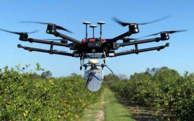 Initiation au pilotage de drone en CAP Métiers de l'agriculture